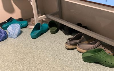 Contaminated operating room boots: The potential for infection